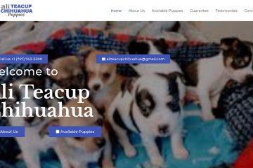 Review of Teacupchihuahuahome com - Puppyscam com