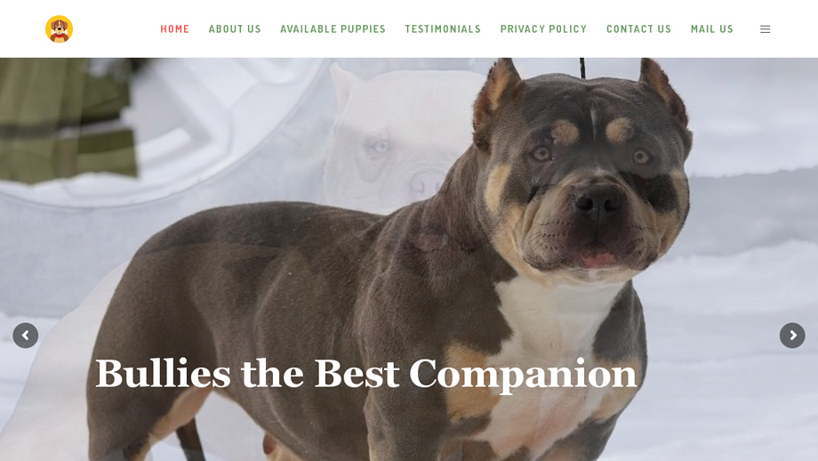 Damelamericanbully.com - Pit Bull Puppy Scam Review