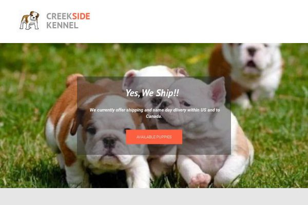 Creeksidekenel.com - English Bulldog Puppy Scam Review