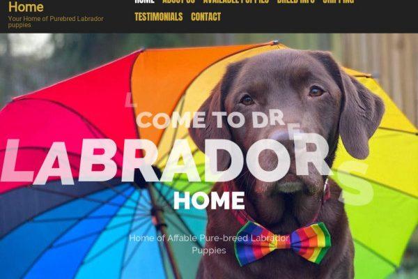 Dreamlabradorhome.com - Labrador Puppy Scam Review