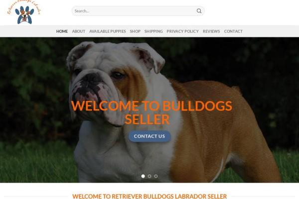Retrieverbulldogslabraseller.com - English Bulldog Puppy Scam Review