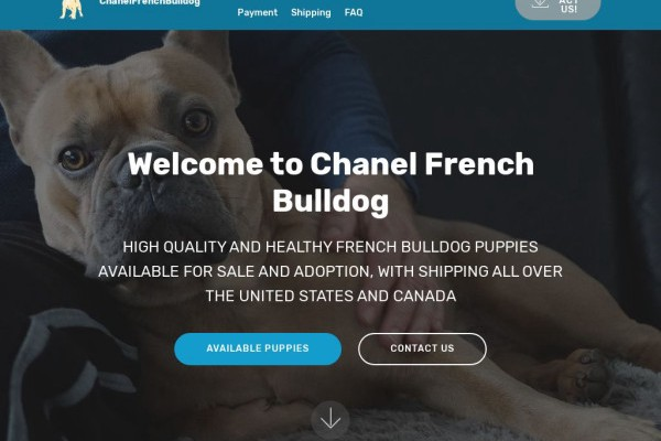 Chanelfrenchbulldog.com - French Bulldog Puppy Scam Review