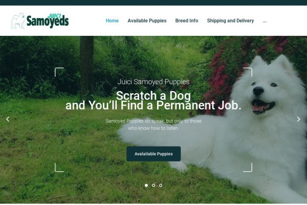 Juicisamoyeds.com - Samoyed Puppy Scam Review