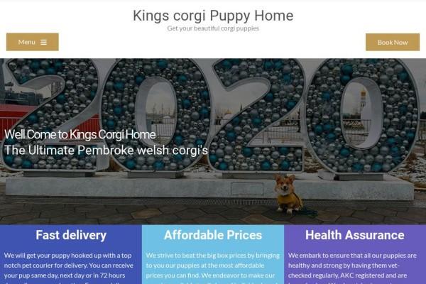 Kingscorgiworld.com - Corgi Puppy Scam Review
