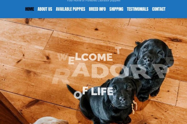 Labradorforlife.com - Labrador Puppy Scam Review