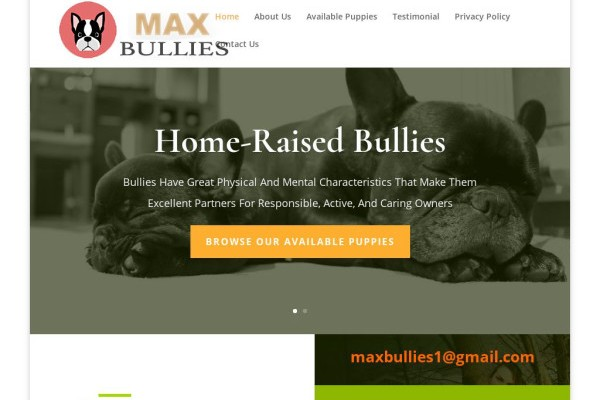 Maxbullies.com - French Bulldog Puppy Scam Review