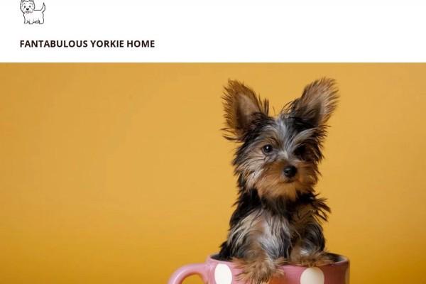 Pureteacupsyorkiehomes.net - Yorkshire Terrier Puppy Scam Review