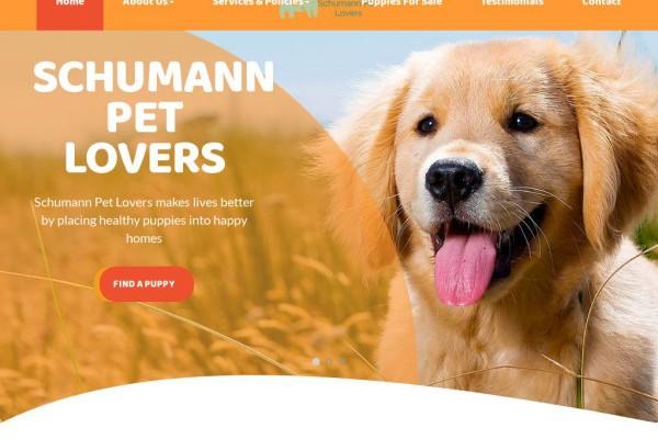 Schumannpetlovers.com - Labrador Puppy Scam Review