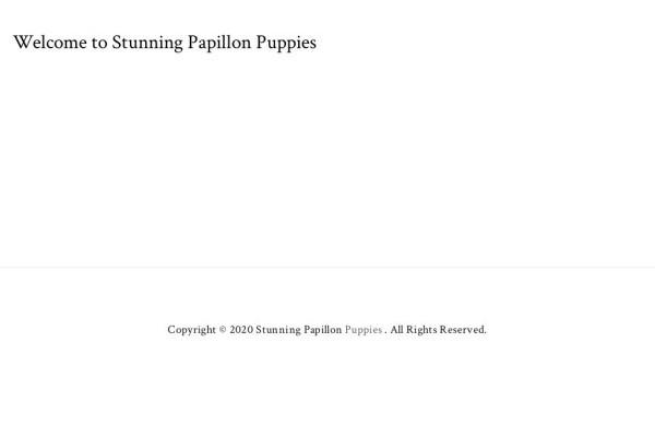 Stunningpapillonpuppies.com - Papillon Puppy Scam Review