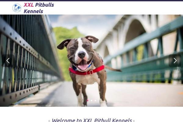 Xxlpitbullkennels.com - Pit Bull Puppy Scam Review