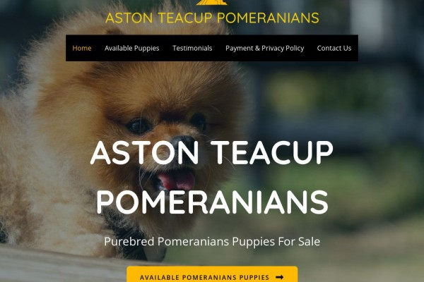 Astonteacuppomeranians.com - Pomeranian Puppy Scam Review