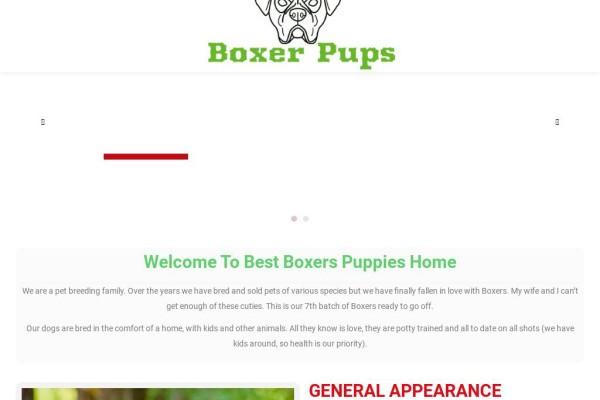 Bestboxerpuppieshome.com - Boxer Puppy Scam Review