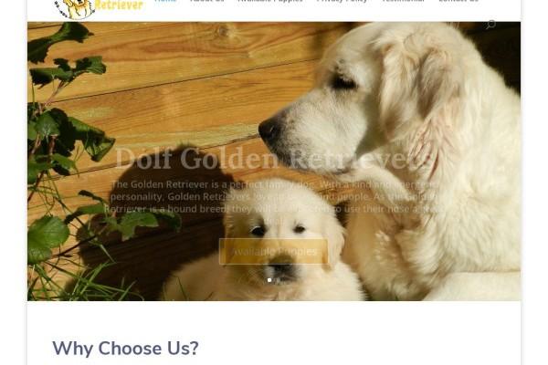 Dolfgoldenretrievers.com - Golden Retriever Puppy Scam Review