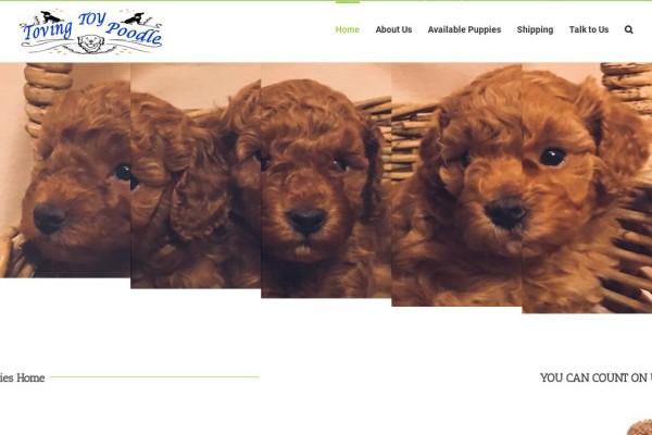 Lovingtoypoodles.com - Poodle Puppy Scam Review
