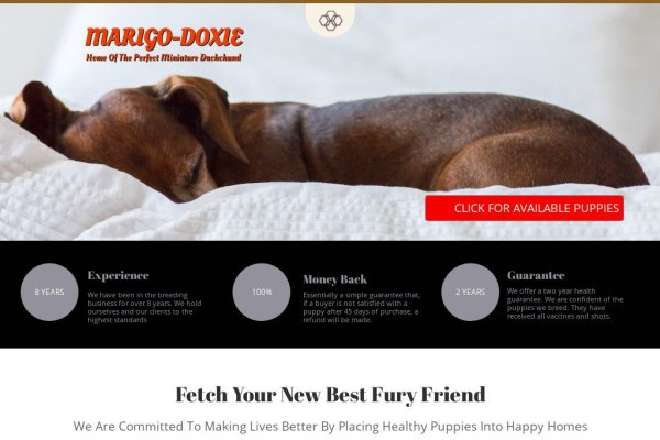 Marigodoxies.com - Dachshund Puppy Scam Review