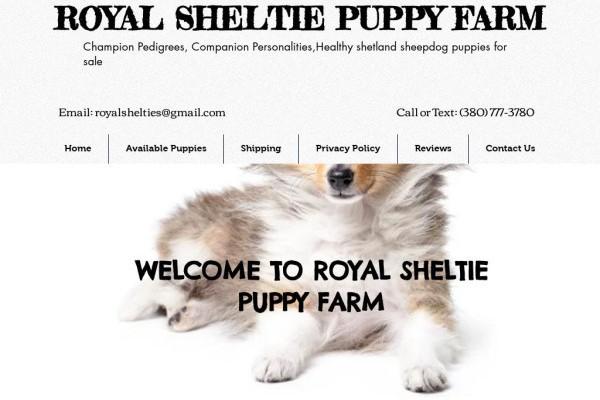 Royalsheltiefarm.com - Sheltie Puppy Scam Review