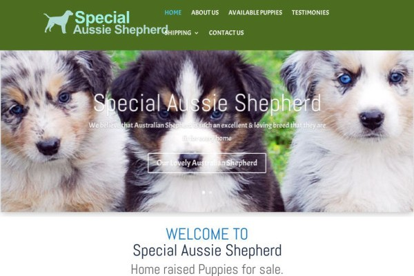 Specialaussieshepherd.com - Germanshepherd Puppy Scam Review