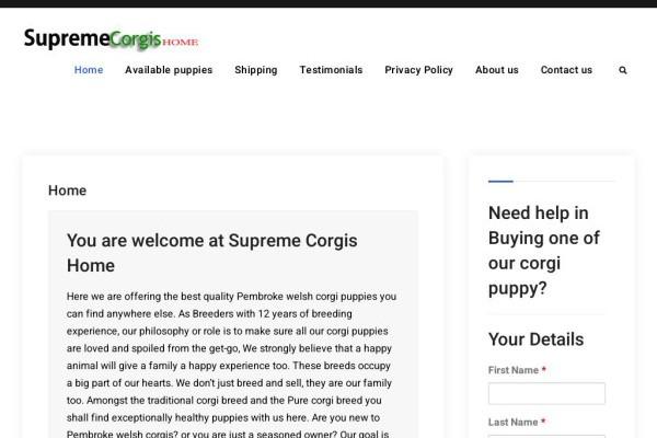 Supremecorgishome.com - Corgi Puppy Scam Review