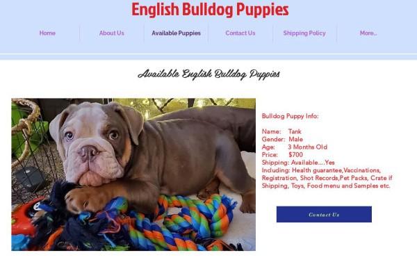 Thehelpformyhome.com - English Bulldog Puppy Scam Review