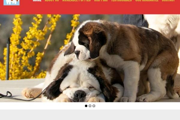 Fluffystbernards.com - Saint Bernard Puppy Scam Review