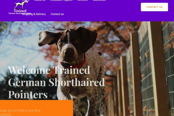 Trainedgermanshorthairedpointers.com - British Shorthair Puppy Scam Review