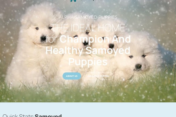 Alphasamoyedpups.com - Samoyed Puppy Scam Review