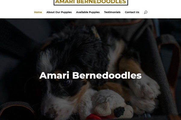 Amaribernedoodles.com - Bernedoodle Puppy Scam Review