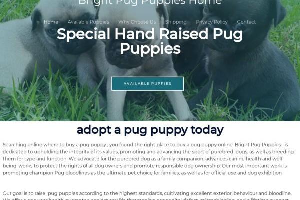 Brightpugpuppieshome.com - Pug Puppy Scam Review
