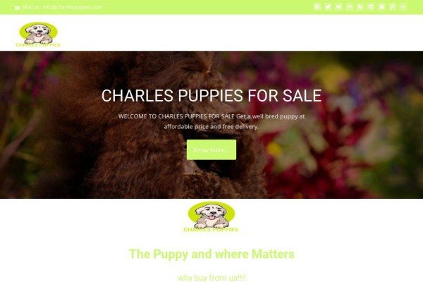 Charlespuppies.com - Cavalier King Charles Spaniel Puppy Scam Review