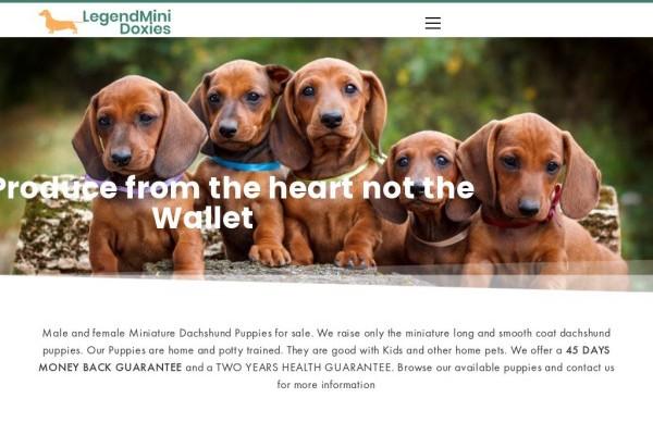 Legendminidoxies.com - Dachshund Puppy Scam Review